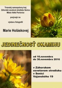 zos_holaskova_2016_plagat